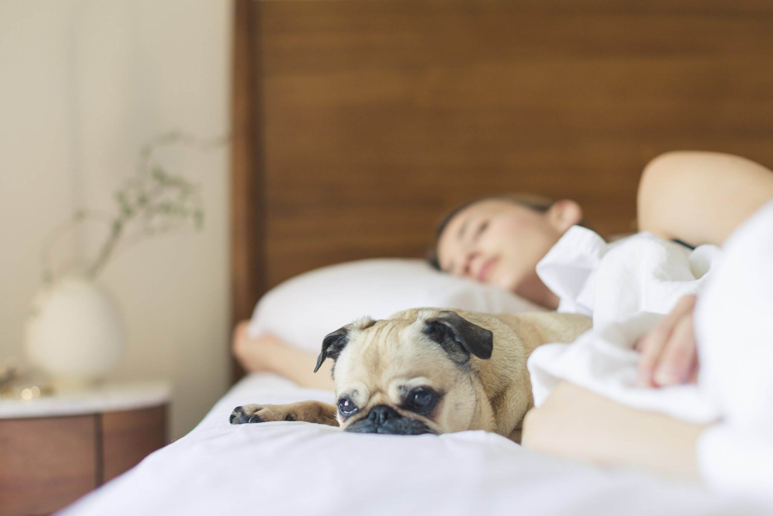 why-do-people-snore-when-sleeping